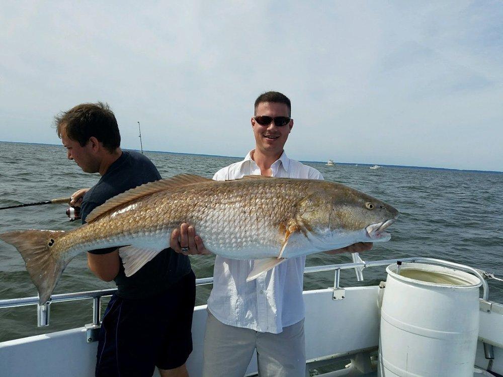 Chesapeake Bay Fishing Seasons | Charter Boats
